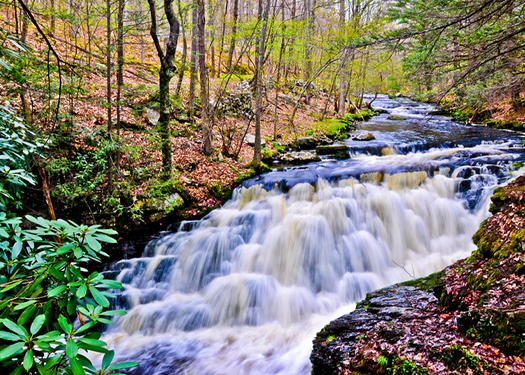Permanent-vacation-9-reasons-why-you-should-live-in-the-Poconos