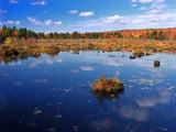 Tobyhanna-State-Park.jpg