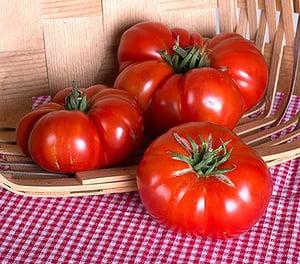 TomatoGenuwine.jpg