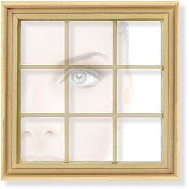 Your-windows-are-your-eyes-to-the-outside-world.jpg